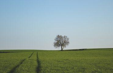 Welt im Wandel – Die Zeit, in der wir leben braucht einen Neuanfang